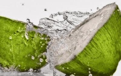 Manfaat Air Kelapa Bagi Kesehatan Tubuh