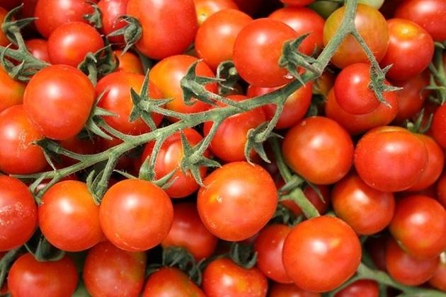 4 Manfaat Tomat Cherry yang Tak Boleh Dilewatkan